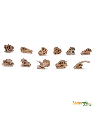 Figurines Crânes dinosaures - Tube Safari Ltd® 687404 Safari Ltd® 687404  Tubes et Toob® - 1
