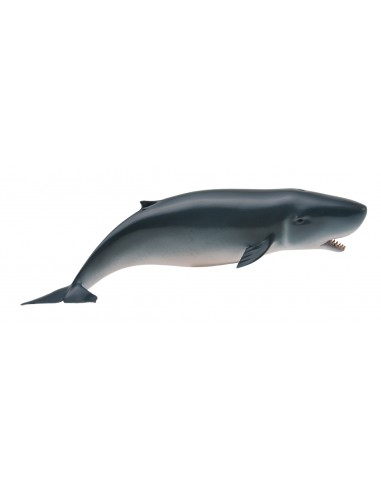 Figurine cachalot pygmée - Animaux marins Collecta Collecta {PRODUCT_REFERENCE}  Vie Marine - 1
