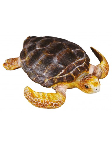 Figurine tortue - Animaux marins Collecta Collecta {PRODUCT_REFERENCE}  Vie Marine - 1