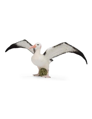Figurine albatros hurleur Animaux marins Collecta 88765 Réplique réaliste Montessori maternelle collection jouet