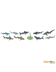 Requins figurine educative montessori education