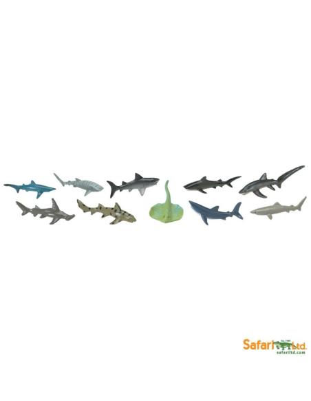 Figurines les requins Tube Safari 697104 Matériel pédagogique Enrichissement Montessori Jouet Cartes maternelle science vocabula