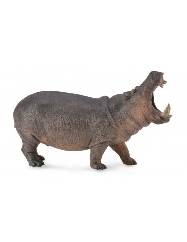 Figurine hippopotame - animaux sauvages Collecta Collecta {PRODUCT_REFERENCE}  Animaux sauvages - 1