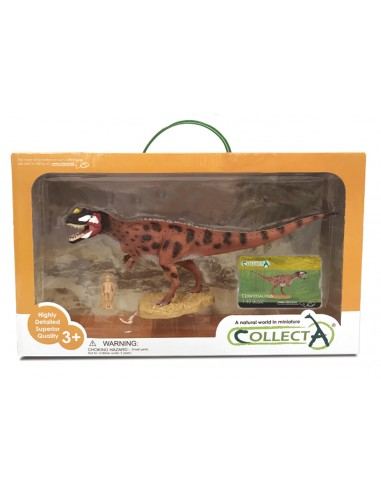 Figurine dinosaure ceratosaurus Collecta 84045 Collecta {PRODUCT_REFERENCE}  En lot - 1
