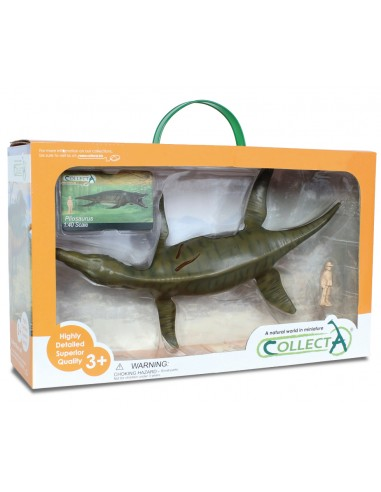 Figurine dinosaure  Collecta 89805 Collecta {PRODUCT_REFERENCE}  En lot - 1