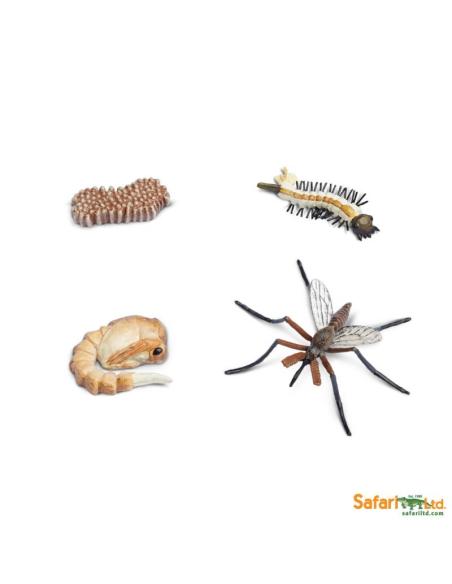 Cycle de vie du moustique figurine educative montessori education enrichissement