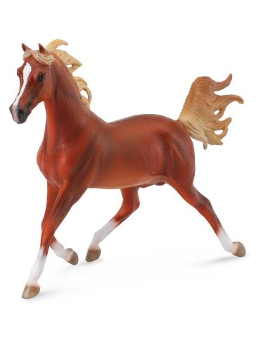 Figurine cheval étalon arabe Collecta 88538 Jouet réaliste replique Animaux Montessori Matériel pédagogique educatif enrichissem