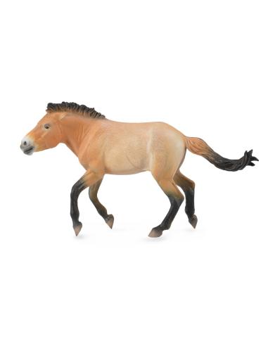 Figurine cheval przewalski etalon Collecta 88602 Collecta {PRODUCT_REFERENCE}  Chevaux et poneys - 1