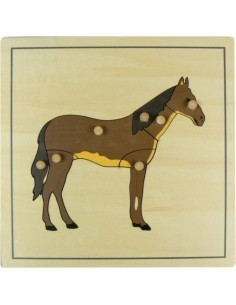 Puzzle du cheval Matériel Montessori didactique zoologie apprendre vocabulaire pedagogie ambiance biologie maternelle