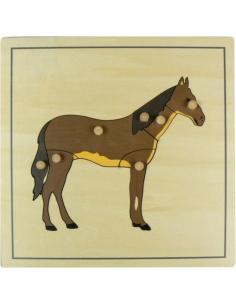 Puzzle du cheval Matériel Montessori didactique