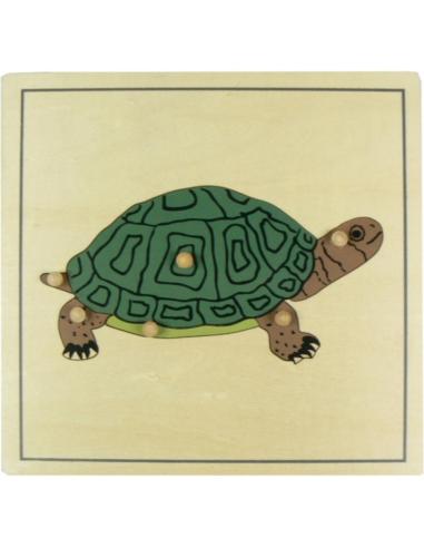 Puzzle tortue zoologie botanique Matériel Montessori didactique