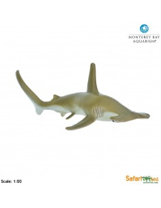 Requin Marteau XL