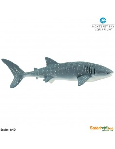 Requin Baleine XL figurine educative enrichissement montessori