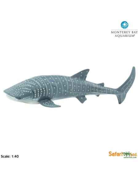 Figurine requin-Baleine géant Safari 210602 Matériel pédagogique Enrichissement Montessori Jouet Cartes maternelle science vocab