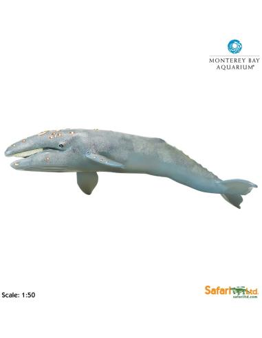 Figurine baleine grise (géant) - Safari Ltd® 210402 Safari Ltd® {PRODUCT_REFERENCE}  Géantes XL - 4