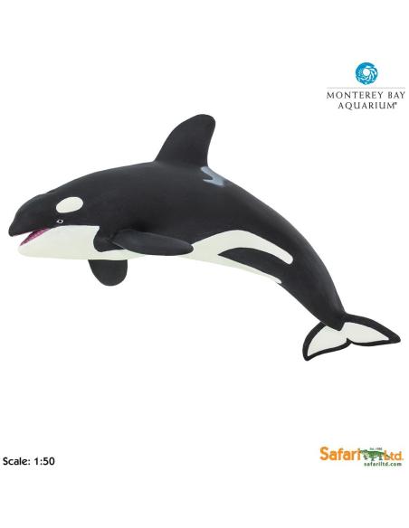 Figurine épaulard Orque géant Safari 210202 Matériel pédagogique Enrichissement Montessori Jouet Cartes maternelle science vocab