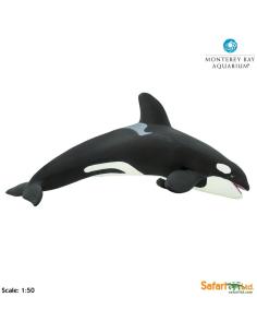 Épaulard XL figurine educative enrichissement montessori