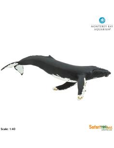 Baleine à bosse XL 35cm figurine educative enrichissement montessori