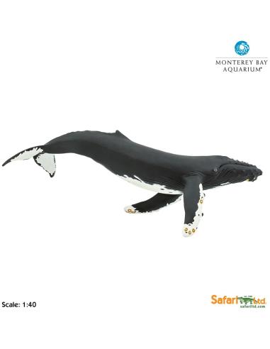 Figurine baleine à bossegéante (35cm) - Safari Ltd® 210002 Safari Ltd® {PRODUCT_REFERENCE}  Géantes XL - 4