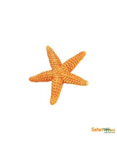 Étoile de mer figurine educative enrichissement montessori