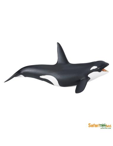 Épaulard figurine educative enrichissement montessori