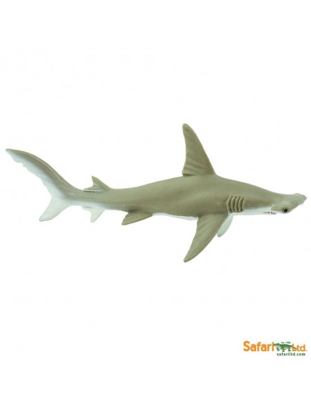 Requin Marteau figurine educative enrichissement montessori