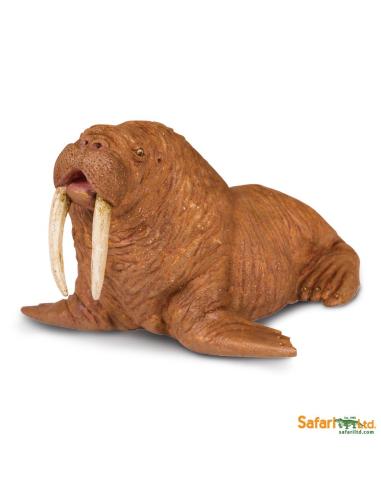 Figurine morse - Safari Ltd® 248729 Safari Ltd® {PRODUCT_REFERENCE}  Vie Marine - 1