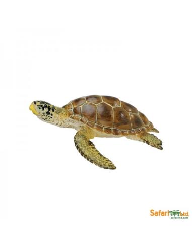 Tortue Caouanne figurine educative enrichissement montessori vie marine