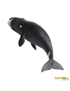 Baleine Boréale figurine educative enrichissement montessori