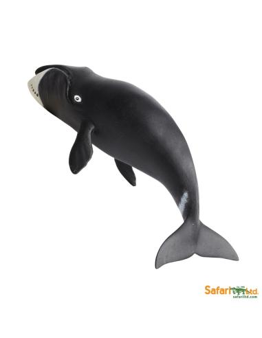 Figurine Baleine boréale - Safari Ltd® 205529 Safari Ltd® {PRODUCT_REFERENCE}  Vie Marine - 2