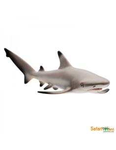 Requin de Récif figurine educative enrichissement montessori