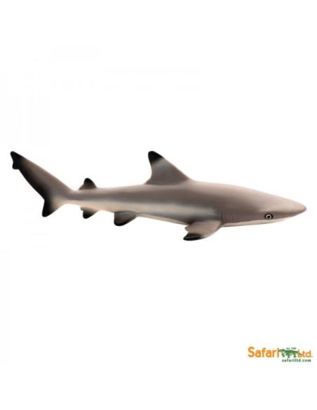 Figurine requin à pointes noires Safari 200029 Matériel pédagogique Enrichissement Montessori Jouet Cartes maternelle science vo