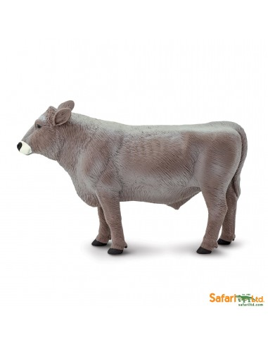 Brown swiss taureau figurine safari enrichissement montessori animal ferme