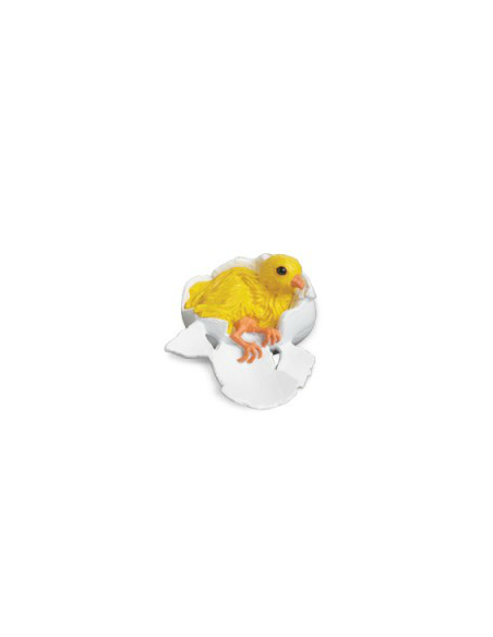 Figurine educative cycle vie poule poulet animal zoologie montessori reggio educatif enrichissement biologie
