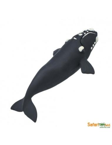 Figurine Baleine franche - Safari Ltd® 204229 Safari Ltd® {PRODUCT_REFERENCE}  Vie Marine - 2