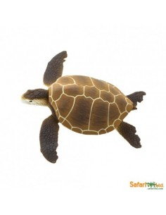 Tortue verte FIGURINE éducative enrichissement matériel Montessori scolaire jouet collection aquatique mer