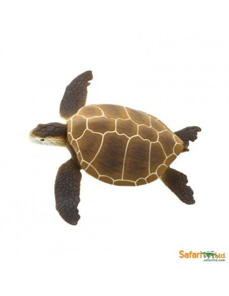 Figurine Tortue verte Safari 202329 Matériel pédagogique Enrichissement Montessori Jouet Cartes maternelle science vocabulaire j