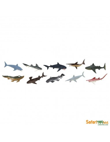 Figurines requins préhistoriques - Tube Safari Ltd® 679904 Safari Ltd® 679904  Tubes et Toob® - 2