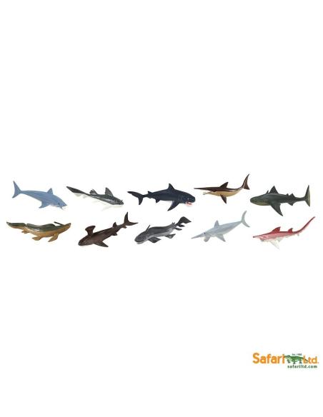 Figurines requins préhistoriques Tube Safari 679904 Matériel pédagogique Enrichissement Montessori Jouet Cartes maternelle scien