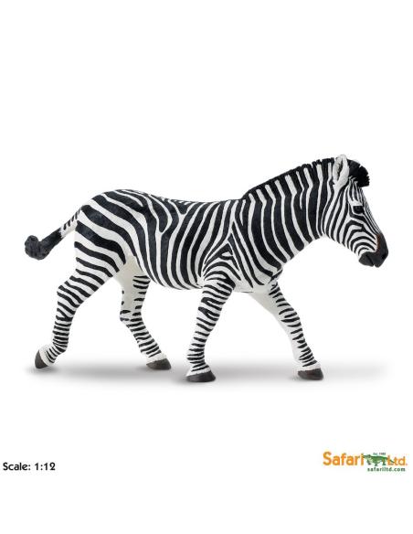 zèbre XL grand animaux des continents figurine safari enrichissement montessori geographie science carte