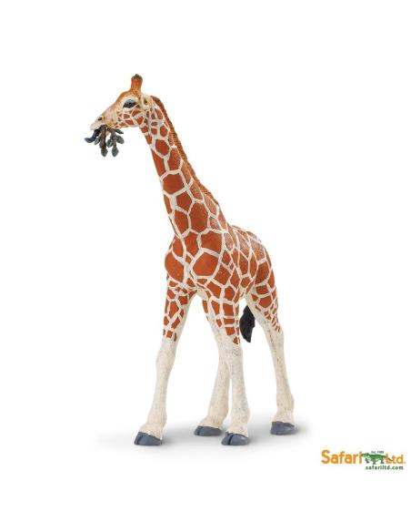 girafe reticulee animaux des continents figurine safari ltd enrichissement montessori geographie science carte 268429