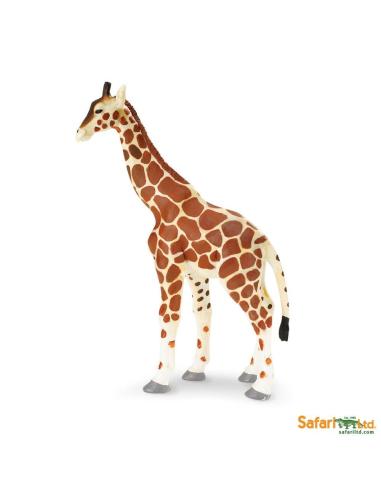 girafe reticulee animaux des continents figurine safari ltd enrichissement montessori geographie science carte