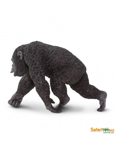 Chimpanzé singe figurine educative Safari montessori Afrique enrichissment decouverte neuroscience