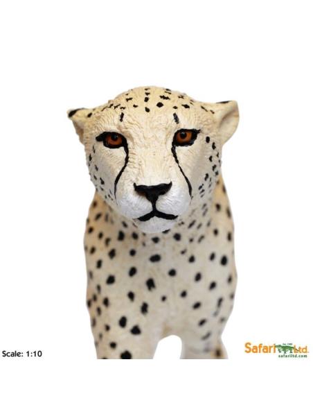 guépard XL grand animaux des continents figurine safari enrichissement montessori geographie science carte