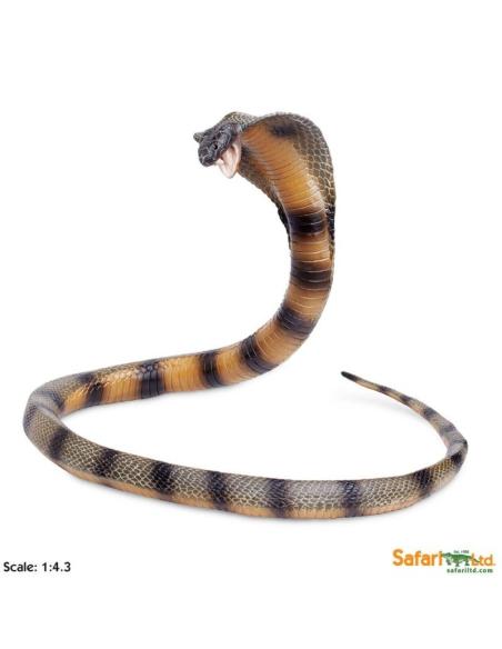 Cobra XL grand animaux des continents figurine safari enrichissement montessori geographie science carte