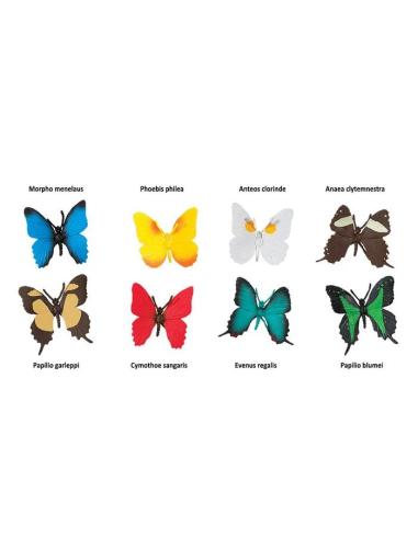 variete Divers papillons figurine educative montessori education vocabulaire svt mon biologie