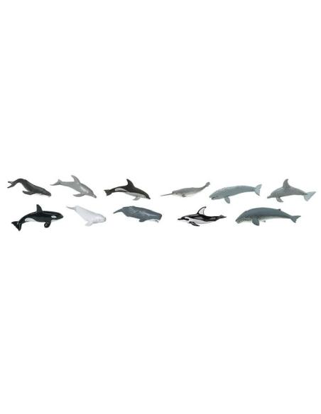 Figurines baleines et dauphins Tube Safari 694704 Matériel pédagogique Enrichissement Montessori Jouet Cartes maternelle science