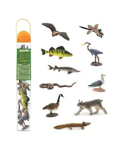 Lot figurine amerique grands lac necture Libellule Érié Bernache Goéland héron Lynx Canada Perche educative montessori education