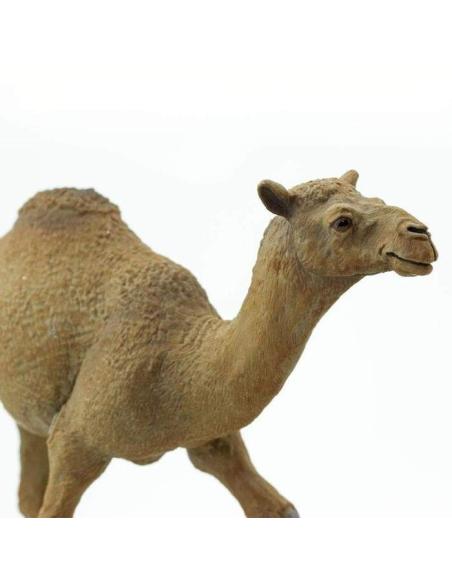 dromadaire animaux des continents figurine safari ltd enrichissement montessori geographie science carte afrique