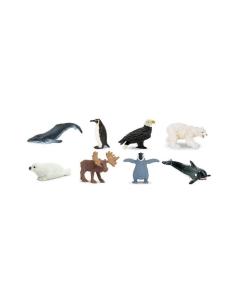 animaux arctique figurine educative montessori enrichissement geographie ecole maternelle safari nomenclature phoque baleine